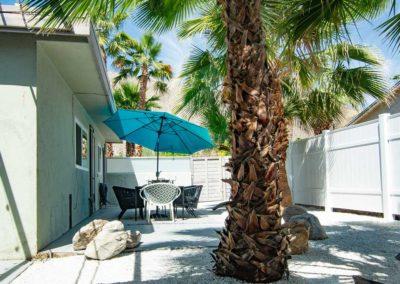 Palms De Luz Back Yard